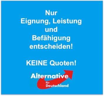 afd feminismus gegnerische alternative f r deutschland keine quoten wieviel. Black Bedroom Furniture Sets. Home Design Ideas