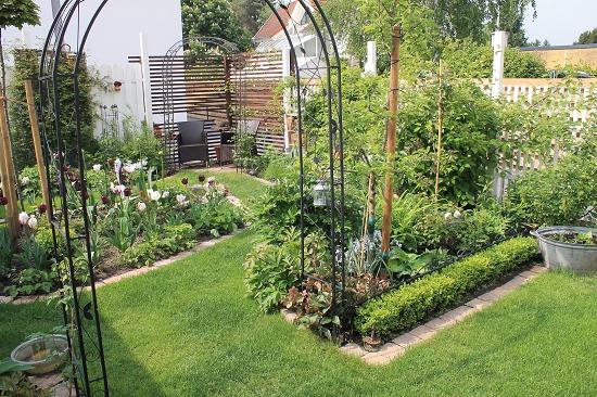 Minigärtchen 2014 - Teil 2 - Page 118 - Mein schöner Garten Forum