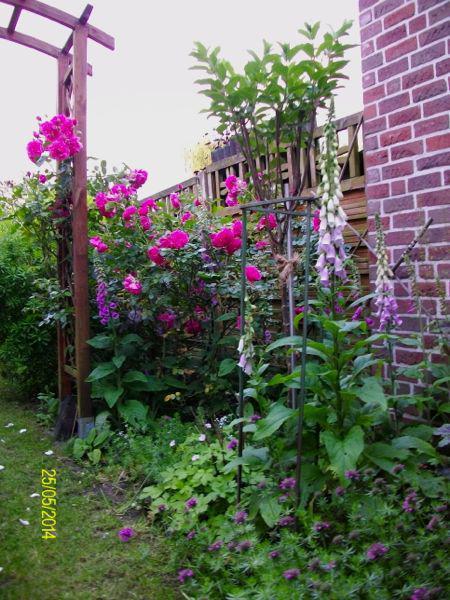 Eure Gartenbilder Beete Und Gestaltungsideen Fr Hling
