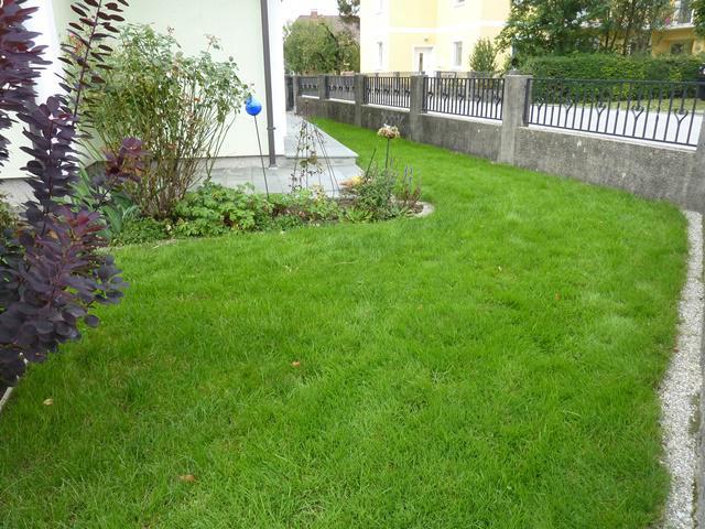 Schmaler rasenstreifen neu gestalten seite 1 for Gartengestaltung schmaler garten