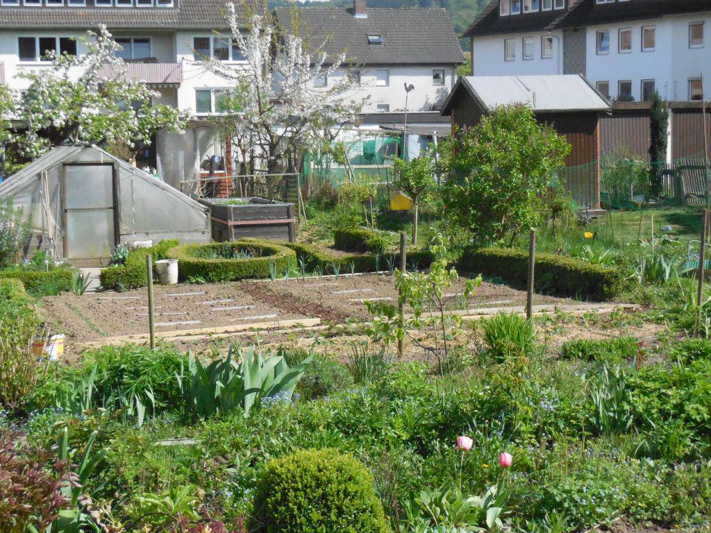 Hühnerhaltung Im Garten hühner im garten page 12 mein schöner garten forum