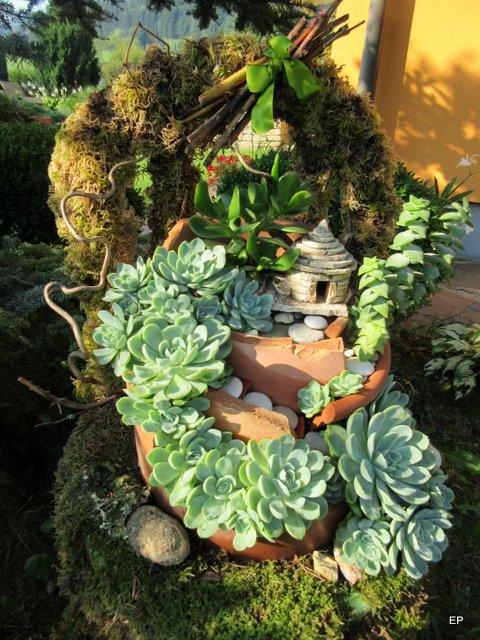 Minigarten Gestalten kreativer minigarten aus kaputtem blumentopf mein schöner garten forum