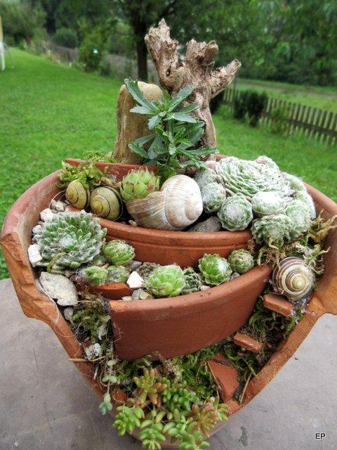 Kreativer minigarten aus kaputtem blumentopf mein for Blumentopf gestalten