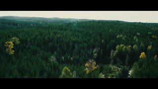 Dans la Forêt Sonata Premiere