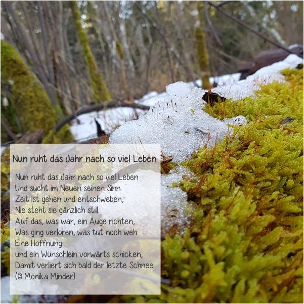 Willkommen Im Neuen (Garten )Jahr. Ich Wünsche Noch Einmal Allen Einen  Guten Start Ins Neue Jahr, Gutes Gelingen Für Alle Anstehenden Projekte Und  Aufgaben ...