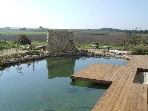 Steg am Teich selberbauen - Mein schöner Garten Forum