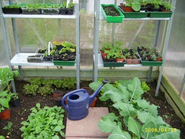 Sehr Anzucht Tische für das Gewächshaus - Mein schöner Garten Forum UW54