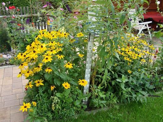 Atemberaubend Welche Blumen hassen Schnecken? - Page 2 - Mein schöner Garten Forum #BU_98